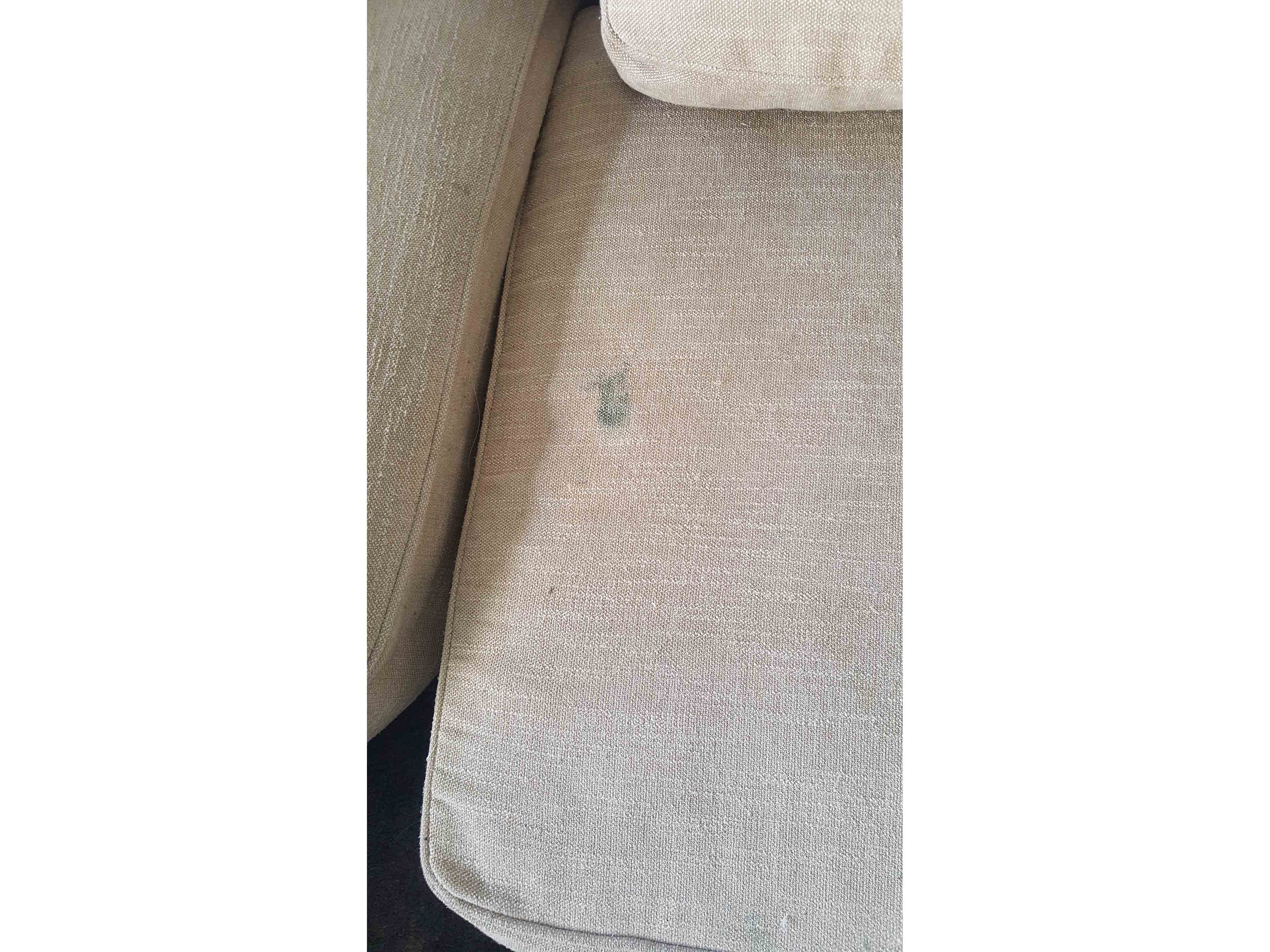 Upholstery Cleaning Professional Upholstery Cleaning Service